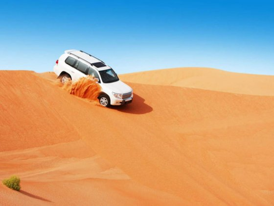 abu dhabi things to do desert safaris