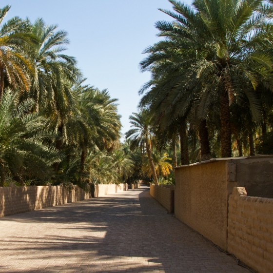 abu dhabi places to visit al ain oasis 1